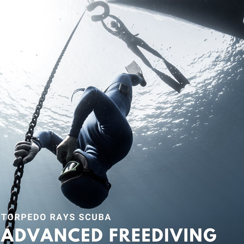 Advanced PADI Freediver