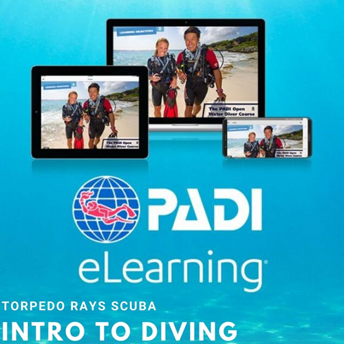 Introductory Diving Course