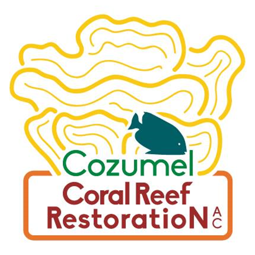 Coral Research Diver W/Accommodations