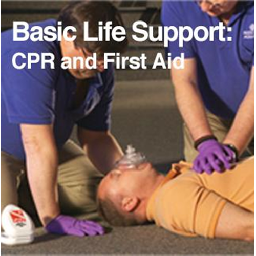 DAN Basic Life Support - CPR & FIrst Aid
