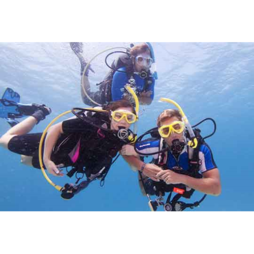 Open Water Scuba Diver - Book and DVD Course
