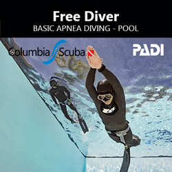 Freediver - Basic