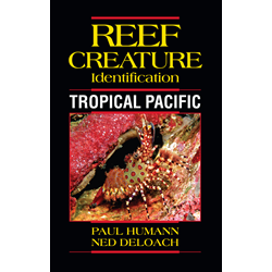 Reef Creature Id Tropical Pacific