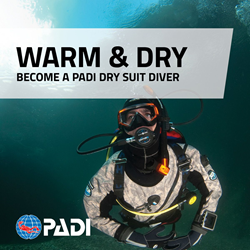 Padi Dry Suit Diver Elearning