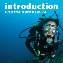 Padi Introduction To Open Water Diver Elearning