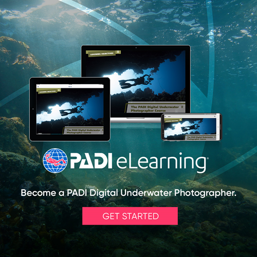 Digital Underwater Photographer eLearning