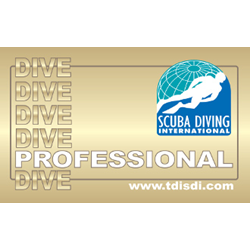 Sdi Open Water Diver Instructor Training Course