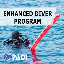 Enhanced Diver Package