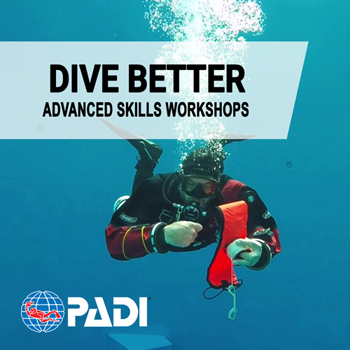 Advanced Skills Workshop