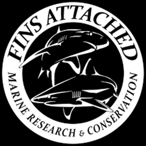 Socorro - Shark Research Trip March 17 - 28