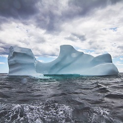 Close Encounter: Drink An Iceberg
