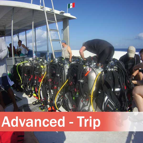 Advanced Open Water Diver - Trip