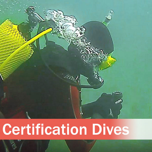 UWM Certification Dives