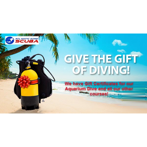 Aquarium Dive Gift Certificate With Certification