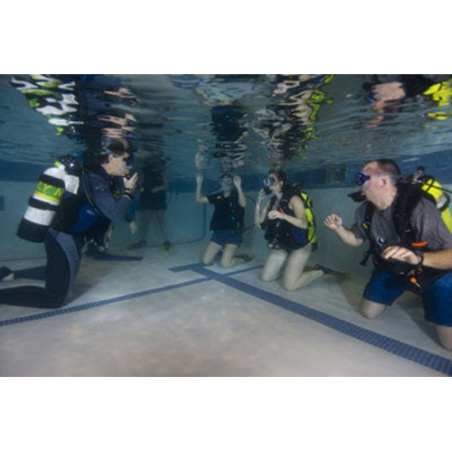 Open Water Scuba Course - Winter