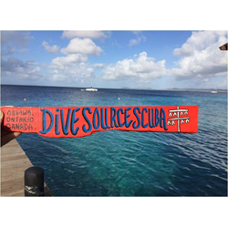 Dive Zone Club Membership