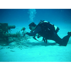 Underwater Photographer Level 2 Specialty Course