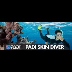 Skin Diver