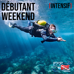 Open Water Diver (intensif)