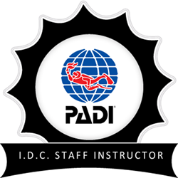 Idc Staff Instructor