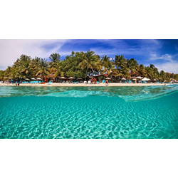 Roatan Package