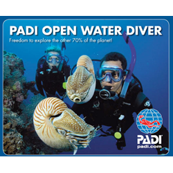 Discounted Open Water Diver