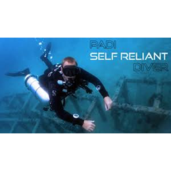 Self Reliant Dive