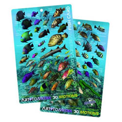 Fish Card, Caribbean 3d Motion