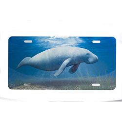 License Plate Manatee