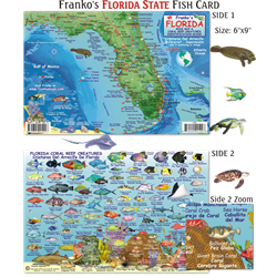 Card, Fl State Map & Fish Id