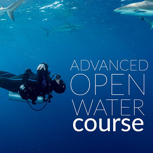 Advanced Open Water Diver - Paper Materials
