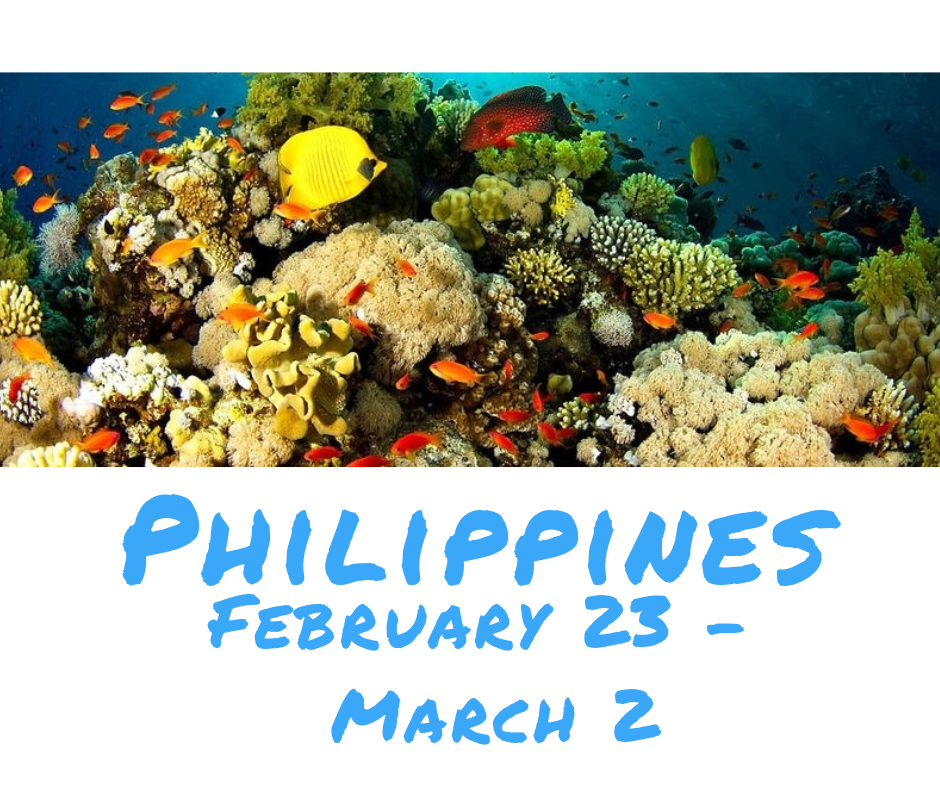 Philippines - Double Diver 2019-02