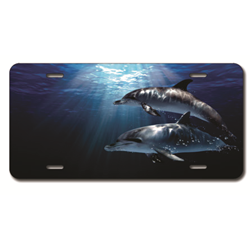 Air Brushed Plate Dolphins