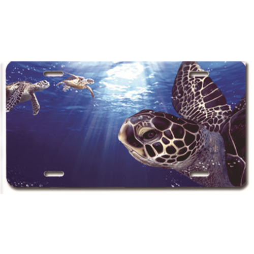 Air Brushed Plate Turtle