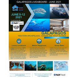 Trip Of A Lifetime To The Galapagos 2021!