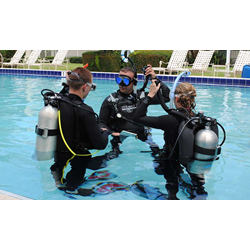 Sdi Elearning, Inactive Diver