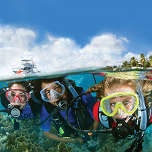 Openwater Diver Tuition Only - Online